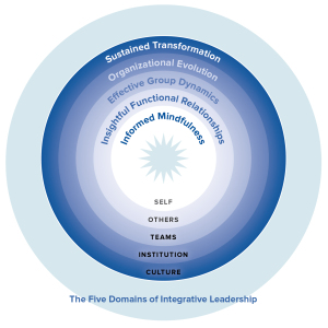 5 Domains of Integrative Leadership